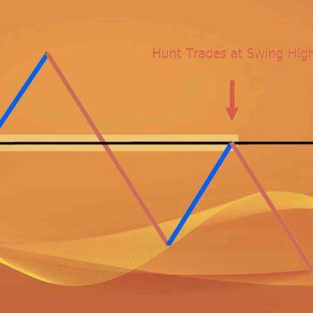 Estratégia de Forex para Iniciantes Brasileiros – Swing Trading